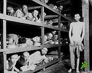 За что Гитлер ненавидел евреев?