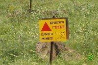 Бедуин забрел на минное поле