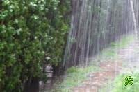 Погоде на ближайший уик-энд