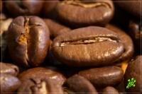 Кофе спасает мозг