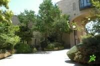 Самых дорогих улиц в городах Израиля