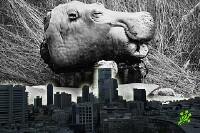 Раньше жители Тель-Авива питались бегемотами