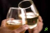 Норма алкоголя для водителей удвоена