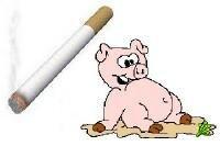 В сигаретных фильтрах используется свиная кровь