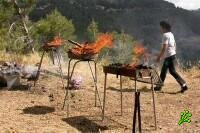 День всенародного поедания шашлыка