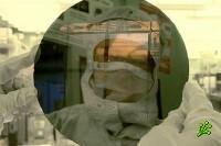 Открытие хайфских ученых
