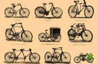 100 млн шекелей yа велосипедные дорожки