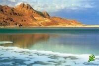 На Мертвом Море приступают к добыче нефти