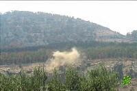 Причина 3-й Ливанской, может стать дерево