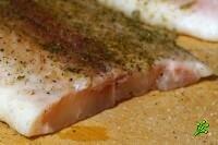 Рыба Баса смертельно опасна
