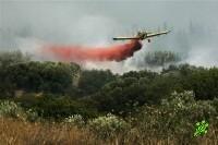 Лесные пожары от Баниаса до Кирьят-Гата