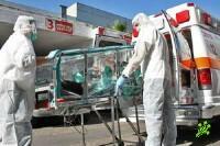 Свиной грипп в ЦАХАЛе