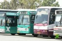 В Тель-Авиве начинают ходить автобусы по субботам